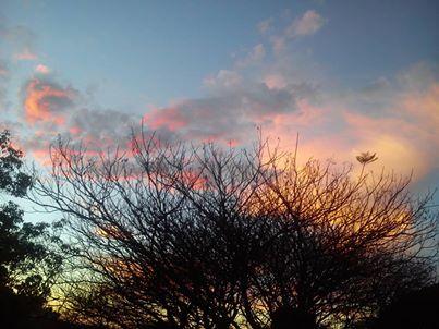 Nuvens e árovres